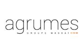 Agence Agrumes